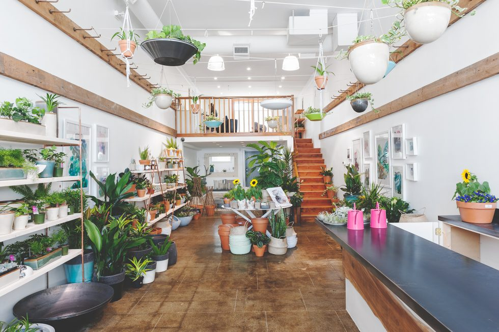 New Biophilia Shop Merges Plants and Home Decor - Modern ...